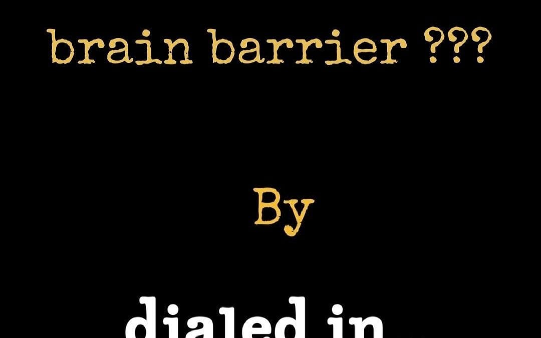 What is the blood-brain barrier and why is it important?