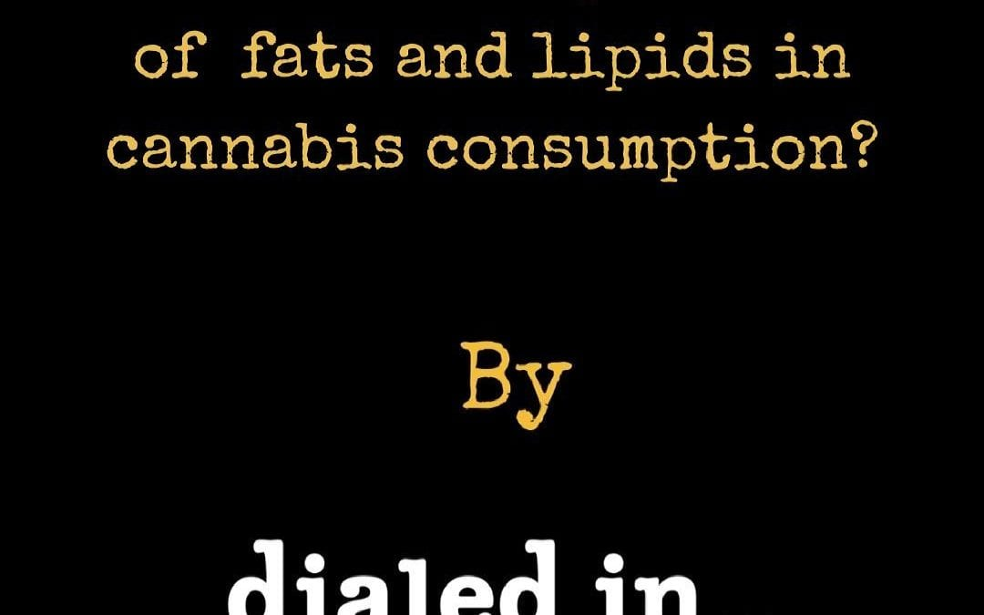 The Importance of Lipids and Fats in Cannabis Consumption